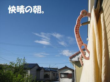 IMG_1805.jpg