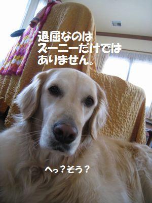IMG_2321.jpg