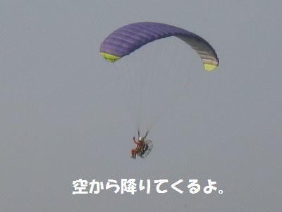 IMG_2539.jpg
