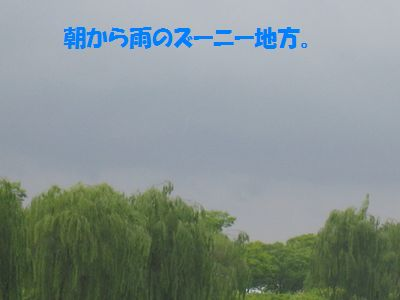 IMG_3090.jpg