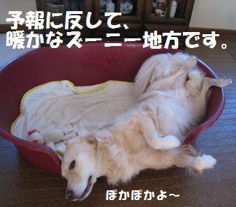 IMG_7893.jpg