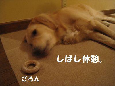 IMG_7962.jpg