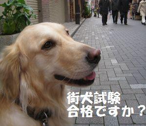 IMG_8076.jpg