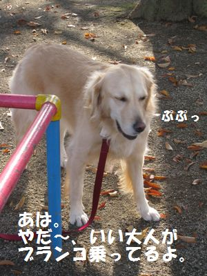 IMG_8094.jpg