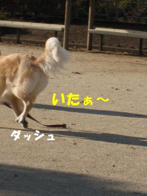 IMG_8105.jpg