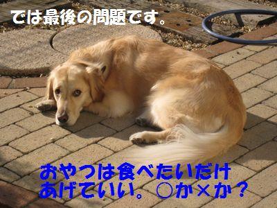 IMG_8199.jpg