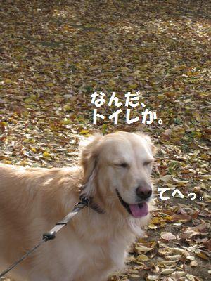 IMG_8490.jpg