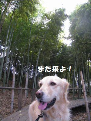 IMG_8493.jpg
