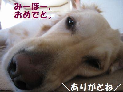 IMG_8551.jpg