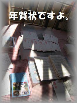 IMG_8637.jpg