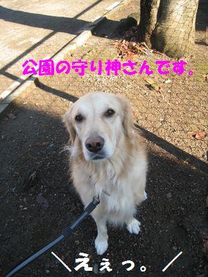 IMG_8654.jpg