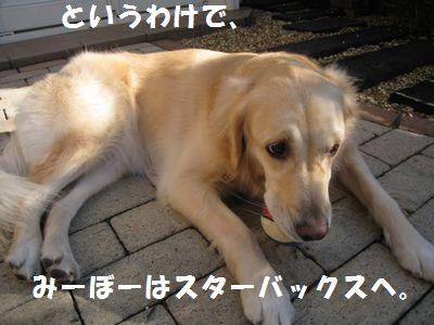 IMG_8664.jpg