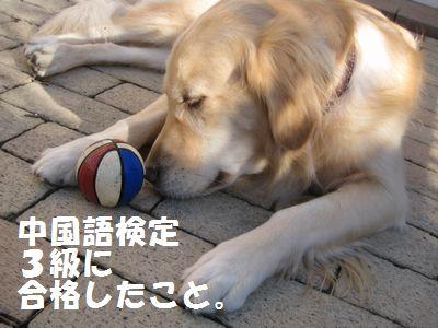 IMG_8665.jpg