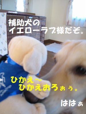 IMG_8725.jpg