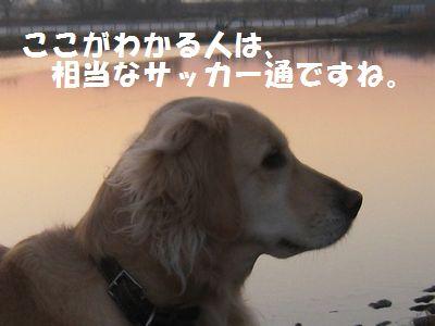 IMG_8783.jpg