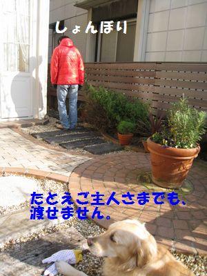 IMG_8829.jpg