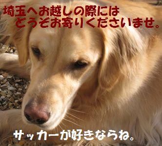 IMG_8833.jpg