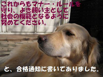 IMG_8868.jpg