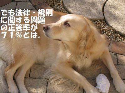 IMG_8874.jpg