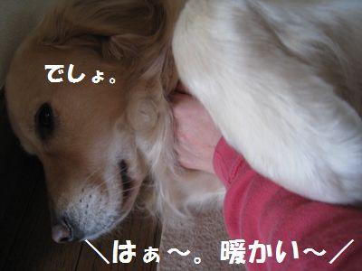 IMG_8895.jpg