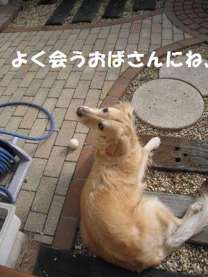 IMG_9297.jpg