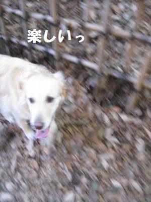 IMG_9538.jpg