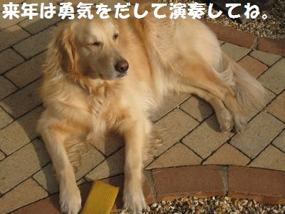 IMG_9734.jpg