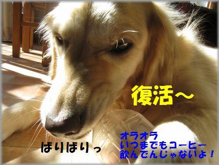 IMG_9853.jpg