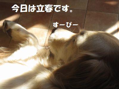 IMG_9859.jpg