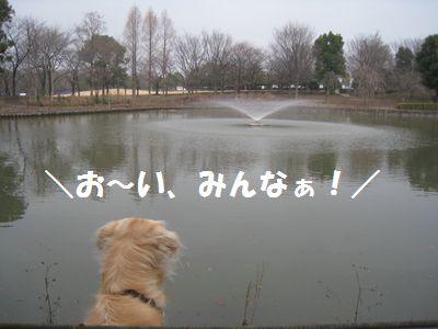 IMG_9899.jpg