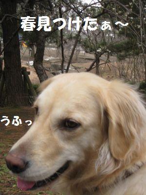 IMG_9936.jpg