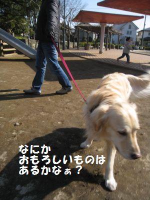 IMG_9964.jpg
