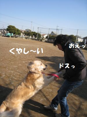IMG_9971.jpg