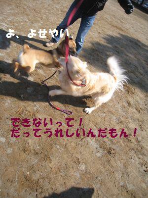 IMG_9975.jpg