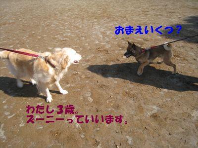 IMG_9977.jpg