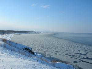2010.02.18;冬海 008