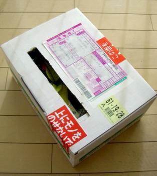 CIMG3798-20081126.jpg