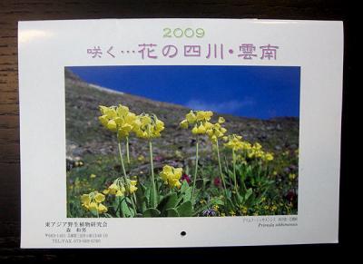 CIMG6029-20090303.jpg