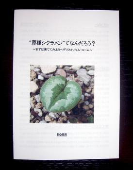 CIMG6030-20090303.jpg