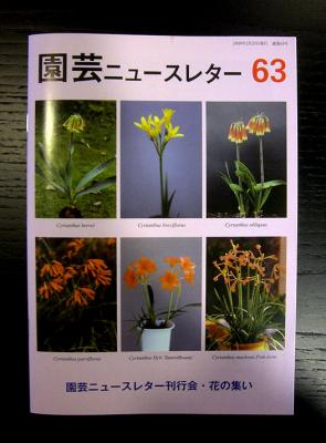 CIMG6036-20090303.jpg
