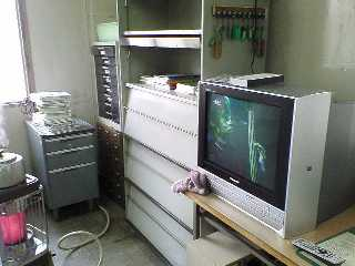 20051228cleaning.jpg