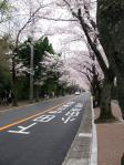 伊東温泉1004041
