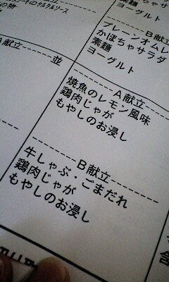 20100313153116