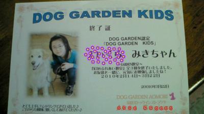 201003221447000_convert_20100322153336.jpg