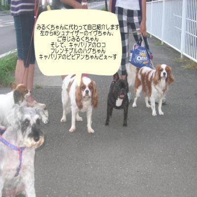 011・搾シ狙convert_20090822095150