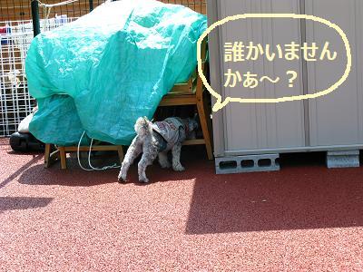 2011_0526_132012-IMG_6408.jpg