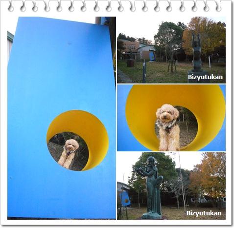cats_20081201164307.jpg