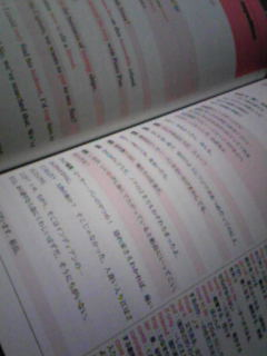 Image542_20100604112304.jpg