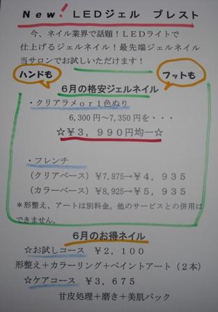 CIMG4462.jpg
