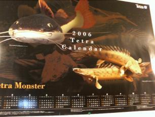 テトラのカレンダー2006